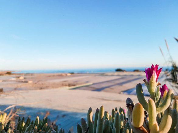 que ver en la provincia de Almería